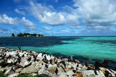3D2N Snorkeling at Pulau Gemia | AMI Travel