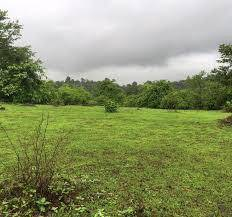 Land Wanted to buy Freehold (1-10 acres) Call me