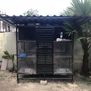 Rumah/cage kucing
