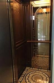 Lift ( Home) Elevators Electric Elevator new