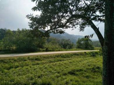 For Sale: Tanah di Ulu Triang Kuala Klawang Jelebu
