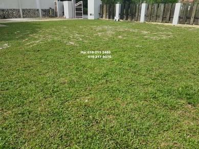 Leman Rumah Tanam Rumput ptong Pokok Japun