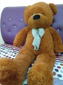 Teddy Bear Giant