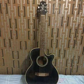 Takamine Guitar D-Series