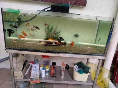 Aquarium 5ft(5 kaki), tank, goldfish, fish, ikan