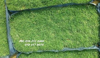 Halaman Rumah Tanam Rumput, grasss tiruan