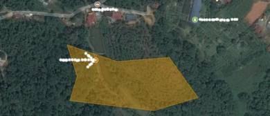 Tanah 6 ekar Bekas Resort Di Sg Cheringin Janda Baik Bentong Phg