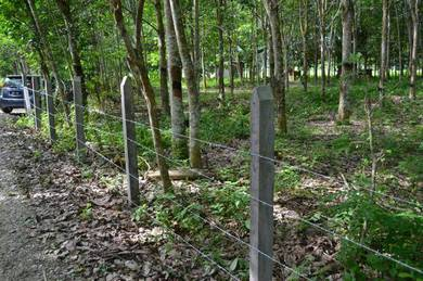 Top pagar & pasang pagar kebun & Pagar hijau