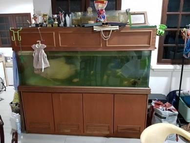 Aquarium 6 feet for sell