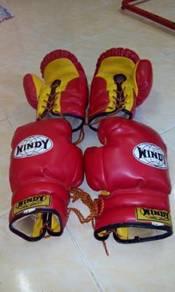 Glove Muay thai Bertali Windy