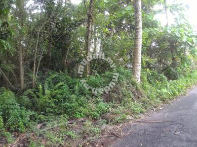 Land in Sungai Bakap For Rent