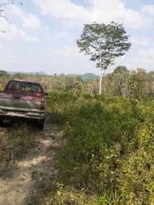 Tanah freehold 6.379 ekar di karak utk dijual utk