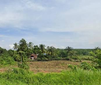 Kedah tanah gurun pokok getah below market price