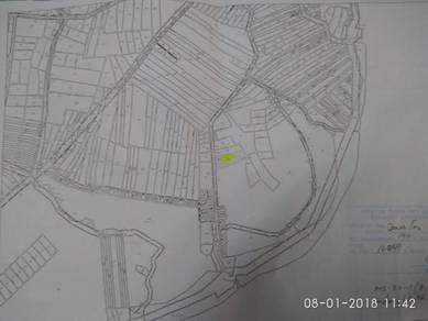 Bunam(terasik) Land For Sale