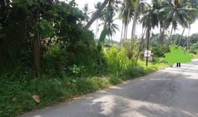 Tanah di Kg Batang Benar, Nilai untuk dijual