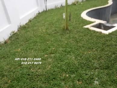 Tanam Rumput& pokok tiruan. Potong Pokok/Trem