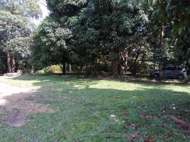 Tanah Pertanian di Mukim Pulau Sebang