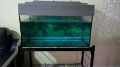 For sale akuarium