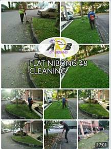 Cleaning / maintanence flat & apartment