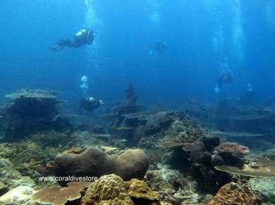 SDI Dive master course 24 aug- 2 sept 2018