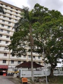 Cheria Heights Apartment Dkt MRT 3R2B with Parking only 4 Early birds