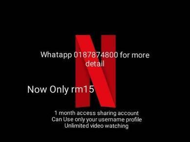 1 Month netflix sharing account access