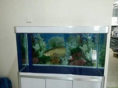Fish tank aquarium akuarium 4 feet