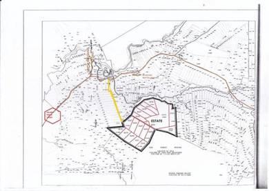 219 acres freehold palm oil estate in selama perak