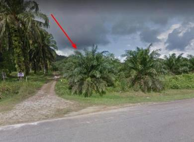 GOOD BUY FREEHOLD Land 9.6 acres Jalan Mersing Kota Tinggi