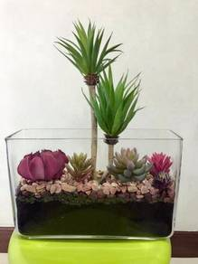 Terrarium (Artificial succulents)