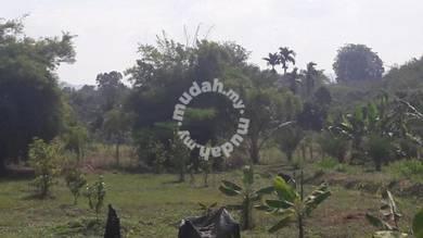 Tanah Bukit Manek