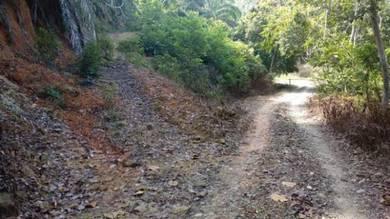 4 acres Tanah Merah Raub