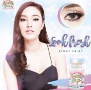 Contact lens (retail/borong) look fresh brown