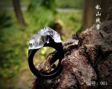 Wood ring secret wood WR1 a