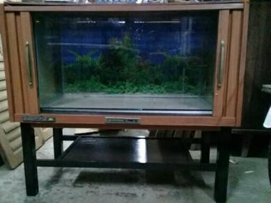 119 Akuarium tv antik aquarium
