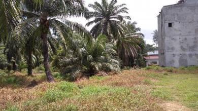 Vacant Flat Land Penaga