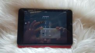 Ipad mini model A1455