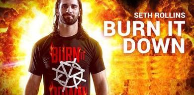 WWE WWF T Shirt (Seth Rollins SR Burn It Down)