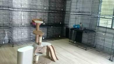 Cat boarding / Cat hotel nearby Zoo Negara