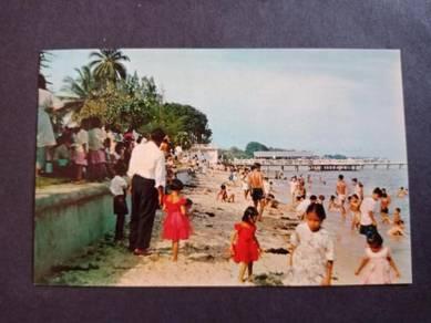 Antik Postcard Marine Parade PC 2502