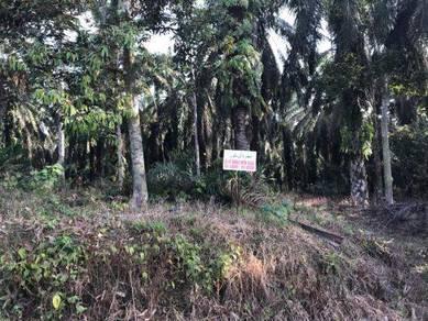 Tanah Lot Banglo di Parit Semo