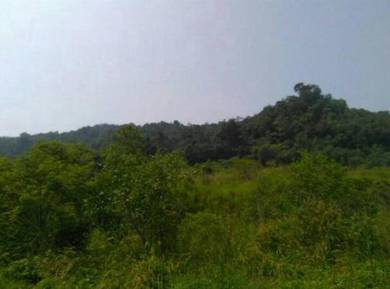 Penang Island Freehold Land for Sale
