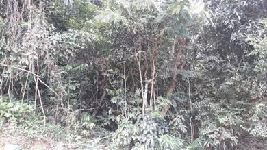 Tanah kosong di kg Sungkak Kuala Pilah