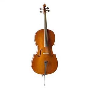 Valencia CE400G-4/4, Cello Outfit