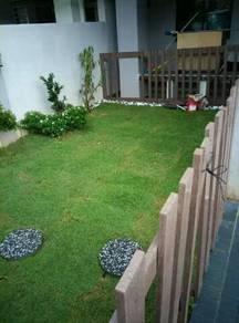 Perk carpet gras garden tanam