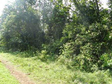 2.8 Acres Flat Land Near to Bomba Mantin, Mantin, NS