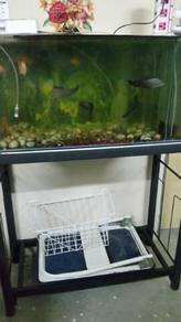 Aquarium (3 Feet with stand )