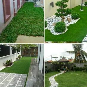 Carpet philipine dan rumput lain.