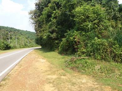 Mainroad Front Land Suitable For Durian Plantation Kuala Pilah,NS