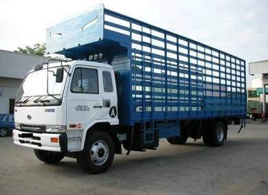 UD Trucks Chicken Carrier PKD211RN